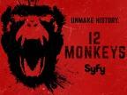 12 Monos (Temporada 1)